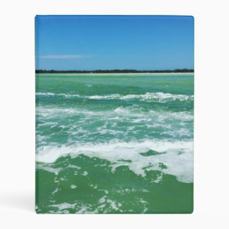 Waves in the Gulf of Mexico Mini Binder