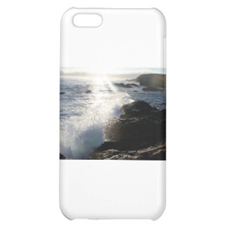 Waves on rocks case for iPhone 5C