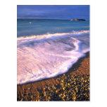Waves on the Hudson Bay coastline, NWT, Canada Postcard