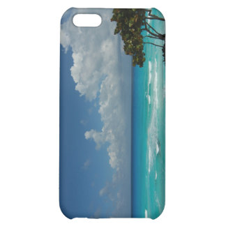 Waves Seascape iPhone 5C Covers