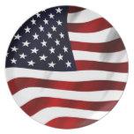 Waving American Flag Dinner Plates