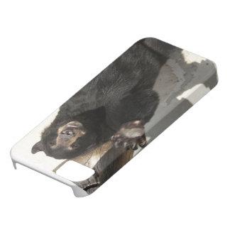 Waving Bear iPhone SE/5/5s Case