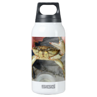 Waving Crab Insulated Water Bottle