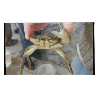 Waving Crab iPad Folio Covers