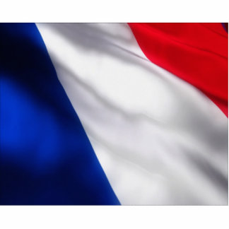 Waving French Flag Standing Photo Sculpture