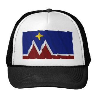 Waving Montana Flag Proposal Trucker Hat