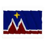 Waving Montana Flag Proposal Postcards