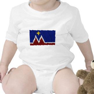 Waving Montana Flag Proposal Tee Shirt