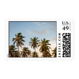 Waving palm trees high in sky stamps