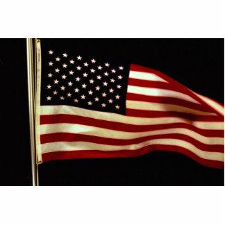 Waving U.S. flag on pole Acrylic Cut Out