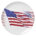 Waving US Flag Dinner Plates
