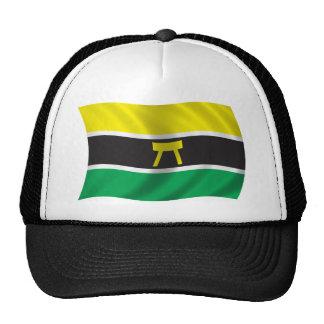 Wavy Ashanti Flag Trucker Hat