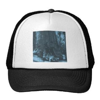Wawona Tree Magic Lantern Maraposa Grove, CA Trucker Hat