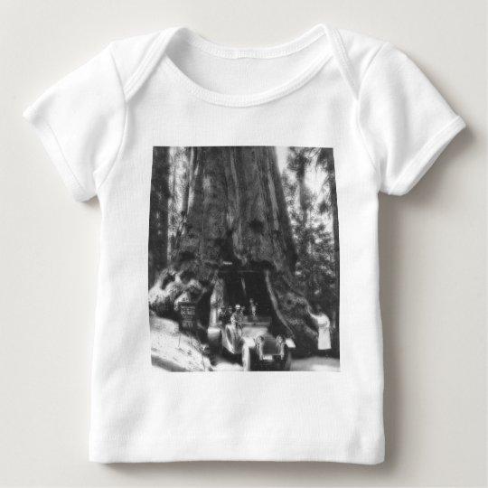 Wawona Tree Magic Lantern Vintage California Baby T-Shirt
