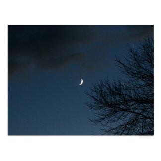 Waxing Crescent Moon In Sagittarius Post Cards