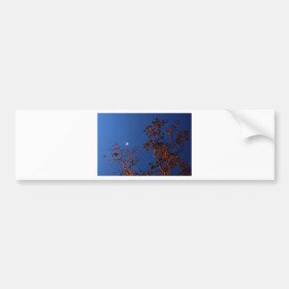 WAXING CRESEBT MOON & GUM TREE AUSTRALIA BUMPER STICKER