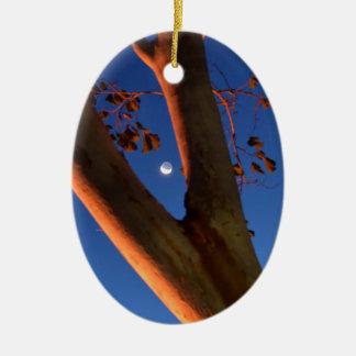 WAXING MOON AND GUM TREE QUEENSLAND AUSTRALIA CERAMIC ORNAMENT