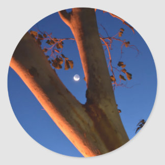 WAXING MOON AND GUM TREE QUEENSLAND AUSTRALIA CLASSIC ROUND STICKER