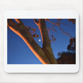 WAXING MOON AND GUM TREE QUEENSLAND AUSTRALIA MOUSE PAD