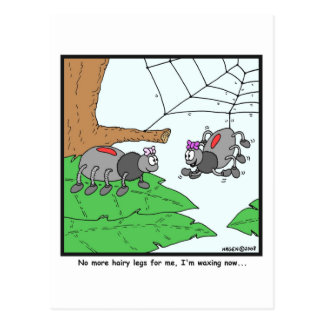 Waxing: Spider cartoon Postcards