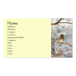 Waxwing Bird In Winter Animal Business Card