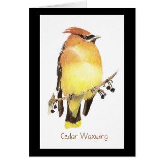 Waxwing de cedro, pájaro de la acuarela felicitación