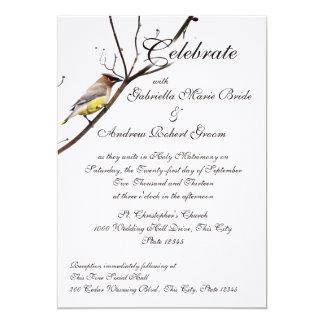 Waxwing del arbolado invitación 12,7 x 17,8 cm