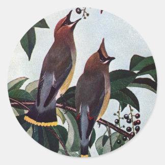 Waxwings de cedro en un cerezo negro salvaje pegatina redonda