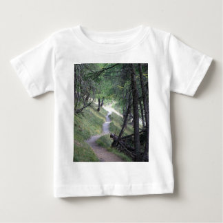 Way in the Alps Baby T-Shirt