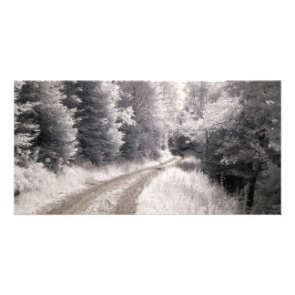Way Infrared Photography Card