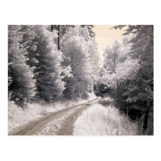 Way Infrared Photography Postcard