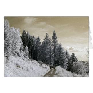 Way into Forest/Infrared Photography Card