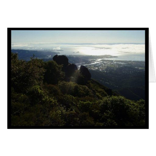 Way up on Mt Tam Greeting Card