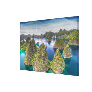 Wayag Island landscape, Indonesia Canvas Print