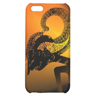 Wayang Arjuna Cover For iPhone 5C