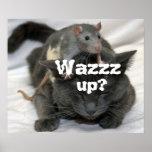 ¿Wazzz para arriba? Poster
