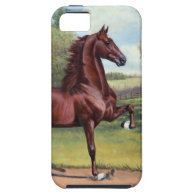 WC Merchant Prince by Jeanne Newton Schoborg iPhone 5 Covers