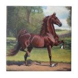 """WC Merchant Prince by Jeanne Newton Schoborg Tile<br><div class=""""desc"""">multiple items</div>"""