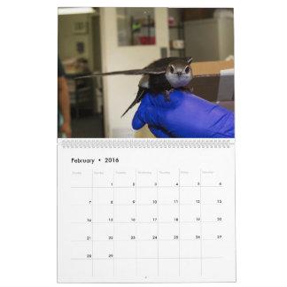 WCA 2016 Patient Calendar