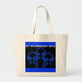 WE 3 CANVAS BAGS