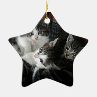 We 3 Kits Ceramic Ornament