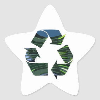 We adore Recycle Champion nvn236 Green Environment Star Stickers