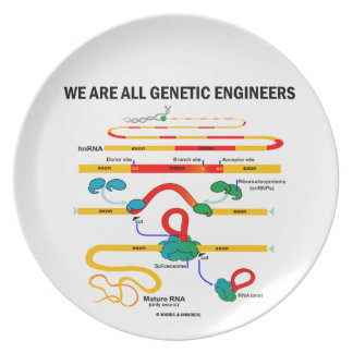 We Are All Genetic Engineers (Gene Splicing) Plate