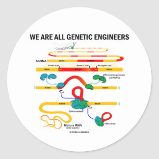 We Are All Genetic Engineers (RNA Splicing) Classic Round Sticker