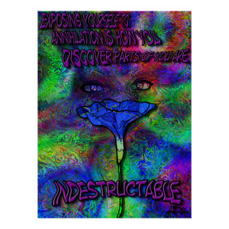 We are indestructable posters