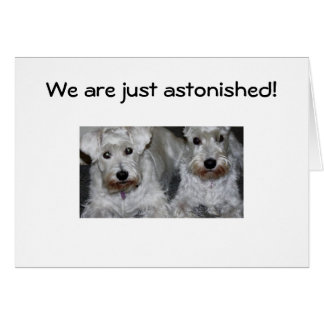 WE ARE JUST ASTONISHED-40th BIRTHDAY Greeting Cards