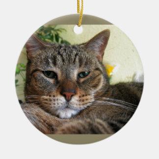 We Are Not Amused Ceramic Ornament