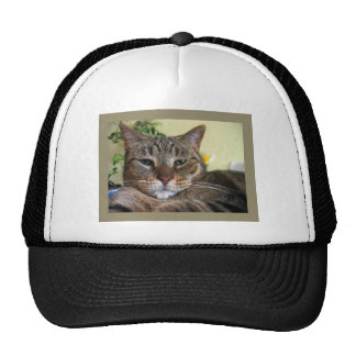 We Are Not Amused Trucker Hat