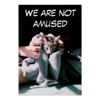 We Are Not Amused Poster