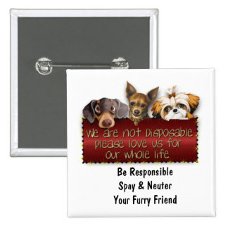 We Are Not Disposable Please Spay & Neuter Button